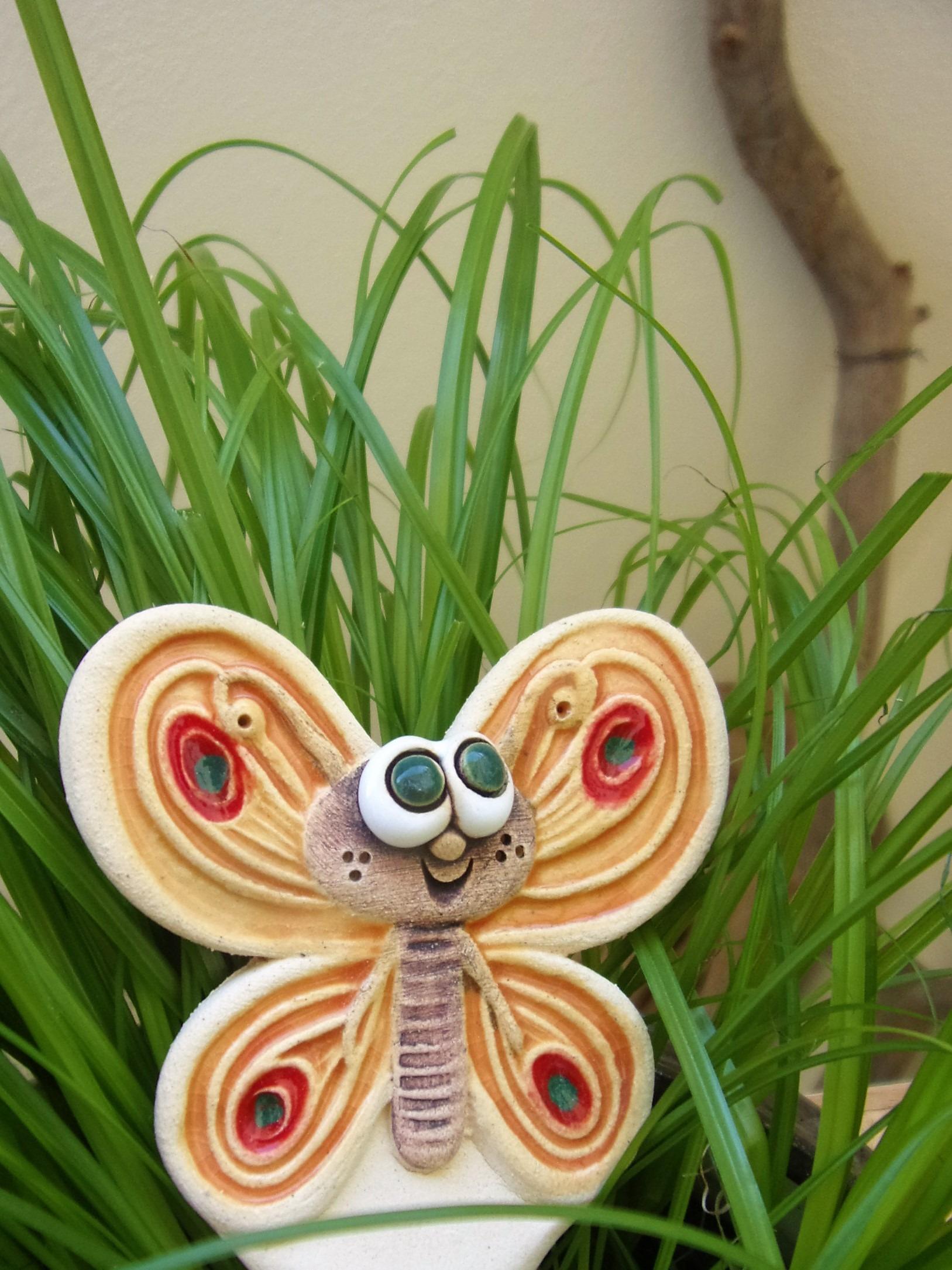 kypřítko motýl